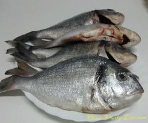 Дорада рыба фото